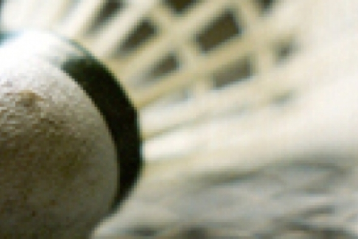 Badmintonboldlille