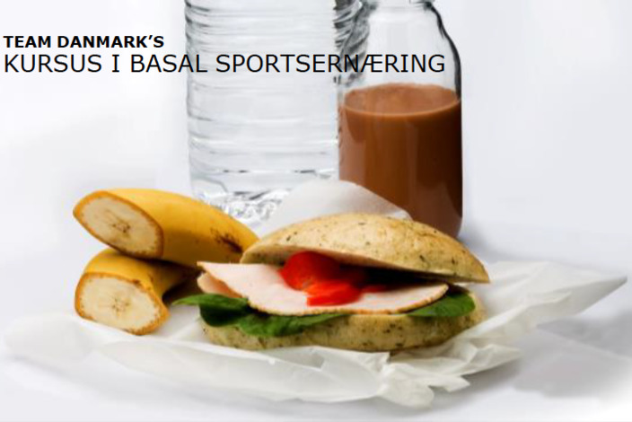 Basal%20sportsern%c3%a6ring%20team%20danmark