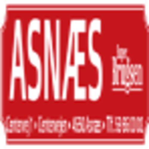 Asn%c3%a6s-logo-4