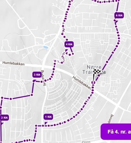 Aalborg%20halvmarathon%20rute%202019_2