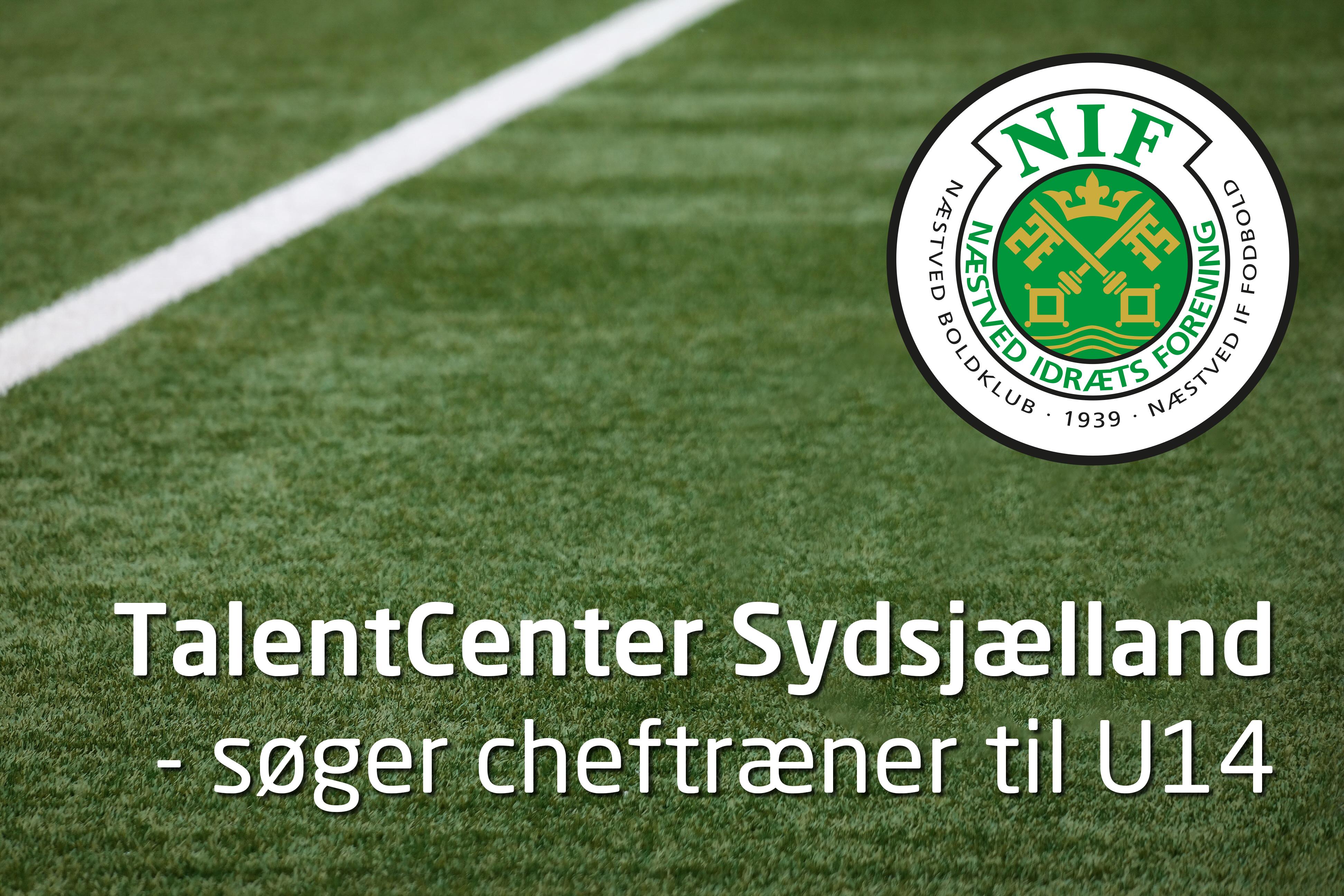 e8181653c9b TalentCenter Sydsjælland søger cheftræner til U14