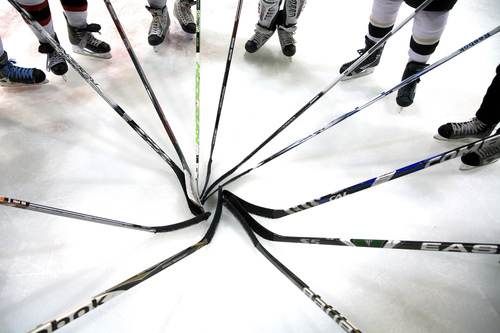 S-warren-lea-valley-ice-hockey-3-test