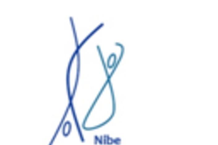 Logo%20-%20ngf