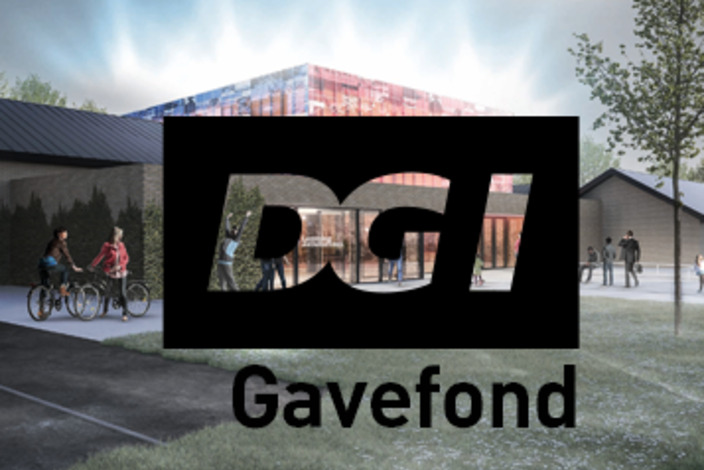 Dgi_gavefond