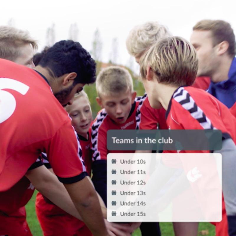 Sports Club Membership Database