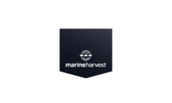 Marineharvest_srcset-large
