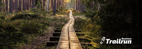 Trailwalk-1280x751-skog-banner