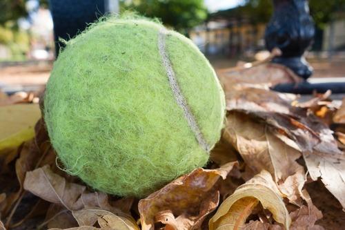 Tennis-ball-512480_1920