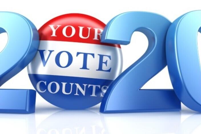 Vote-2020-11