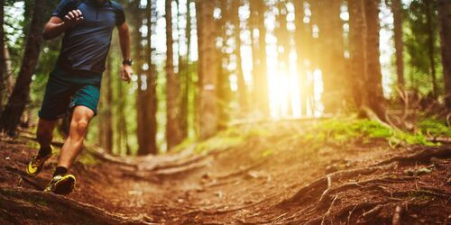 Man-trail-running-in-the-forest-royalty-free-image-1587995908