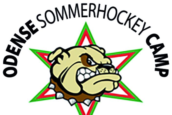 Sommerhockeycamp