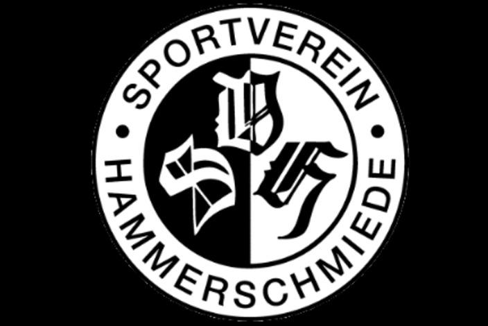 Hauptverein